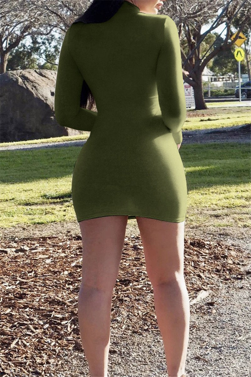 Solid Color High Collar Mini Dress
