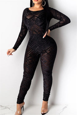 Net Yarn Hollow Out Sheer Jumpsuit