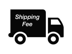 Shipping Fee for BM-3187