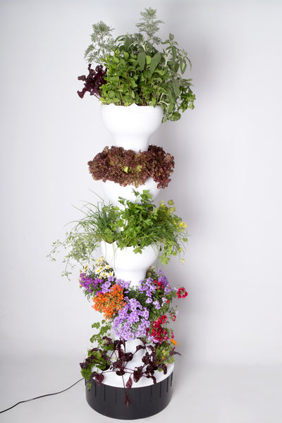 Foody - Vertical Hydroponic System