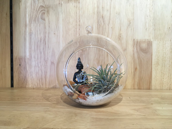 Simply Farm Hanging Bowl Terrarium With AirPlant
