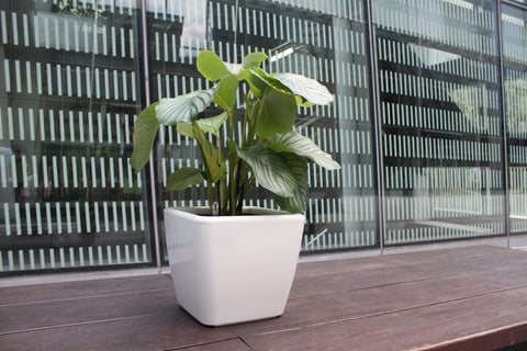 Simply Farm Rains Series Planters, SF-RA2825