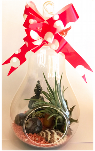 Simply Farm Light Bulb Terrarium With AirPlant