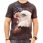 USA Flag and Bald Eagle Men's T-Shirt