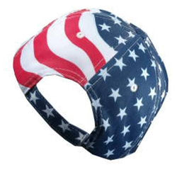 Buck Waving Angled Flag Hat - The Flag Shirt
