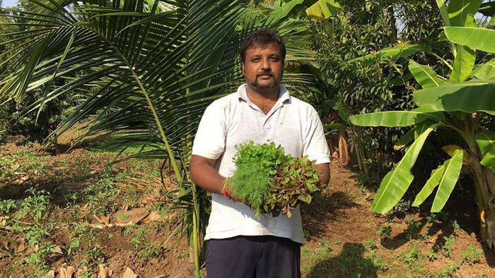 Read On About the Deterioration of Health and Proliferation of Chemicals Around us From Madhu Chandan (Founder of Organic Mandya) Himself.