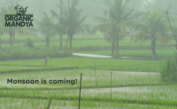 Monsoon is coming, are we Ready to Save Water, and in turn Save Ourselves?