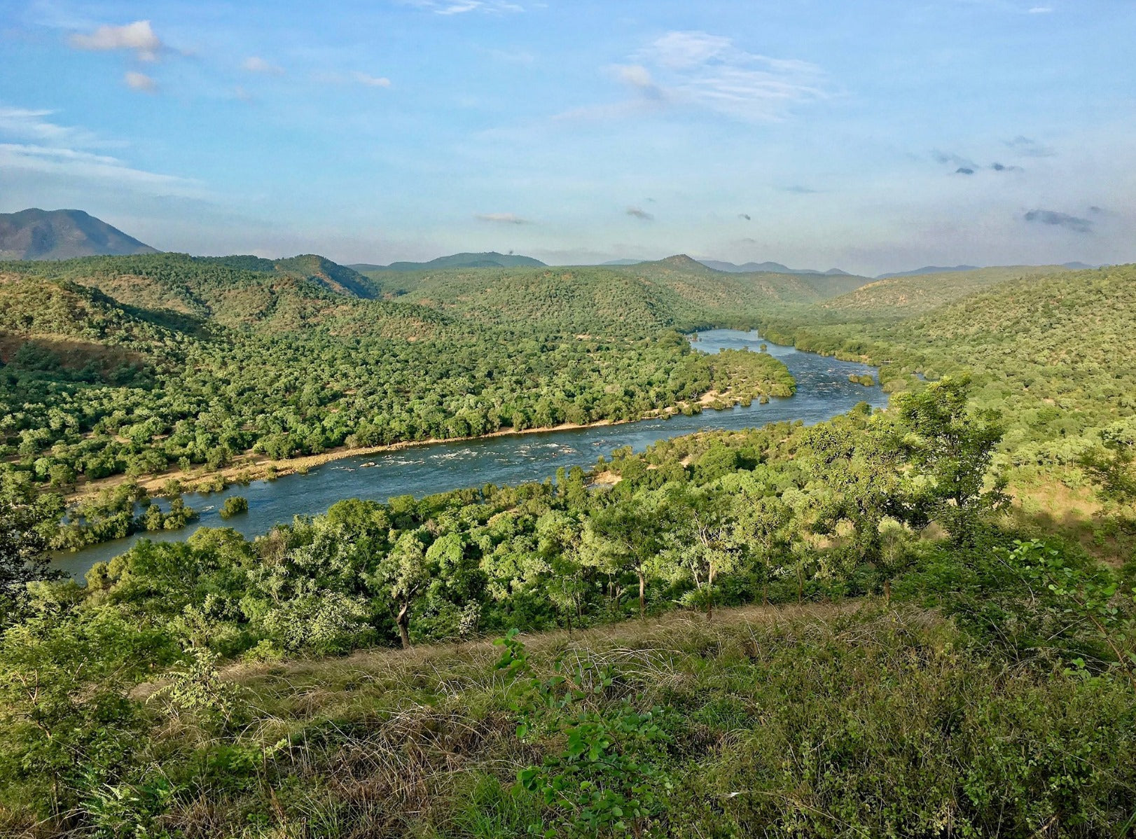 Mekadetu Project to take Land Away from Cauvery Wildlife Sanctuary!