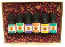 Load image into Gallery viewer, Starter Pack - Essential Oil Gift Set - Aroma Energy