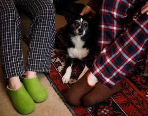 border collie at Jampa Ling wearing wool slippers cosy next to the fire
