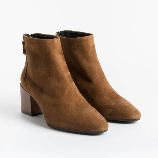Cappelletto 1948 - Lara3 Ankle Boots - Cigar Suede Shoes Woman CAPPELLETTO 1948