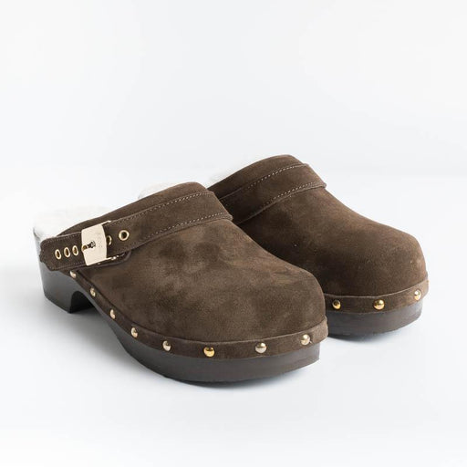 Scholl Iconic - Pescura Clogs - Brown Shoes Woman SCHOLL ICONIC