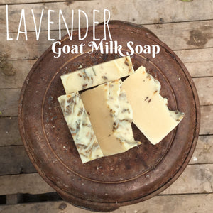 Edens Lilly Goats Milk Soap - Lavender