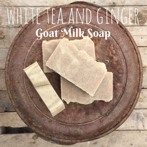 Edens Lilly Goats Milk Soap - White Tea and Ginger