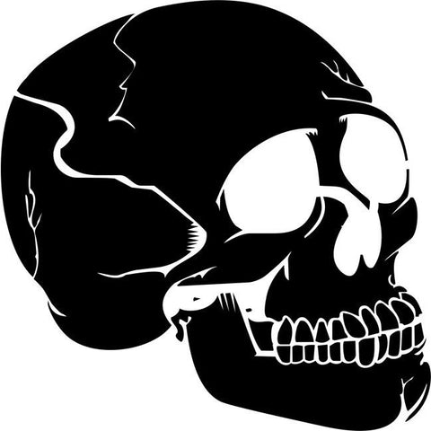 Human Skull Profile Stencil by Crafty Stencils