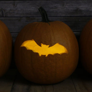 Bat Craft Stencil