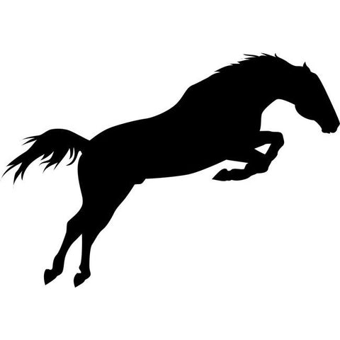 Jumping Horse Stencil
