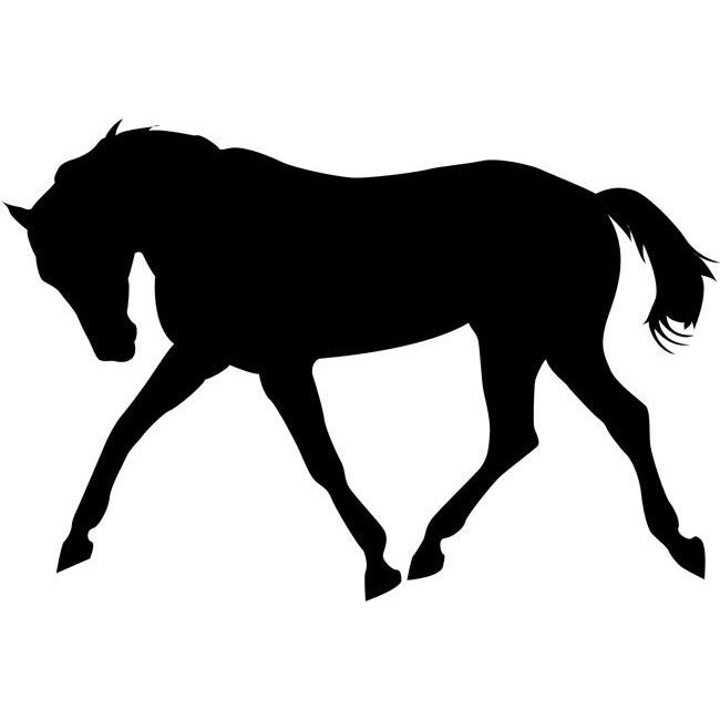 Bucking Horse Stencil by Crafty Stencils