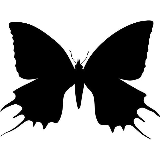 Giant Swallowtail Butterfly Stencil by Crafty Stencils