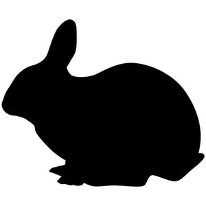 Hopping Rabbit Craft Stencil