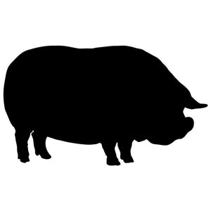 Potbelly Pig Craft Stencil