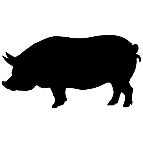 Mother Pig Craft Stencil