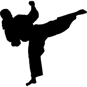 Back Kick Karate Silhouette Stencil