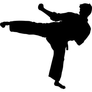 Reverse Roundhouse Kick Karate Stencil by Crafty Stencils
