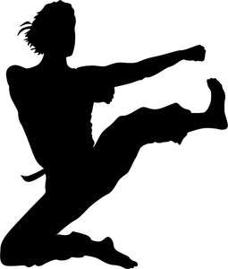 Flying Kick Karate Stencil