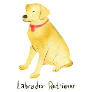 Labrador Retriever Greeting Card Craft Stencil