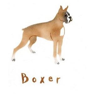 Boxer Greeting Card by Crafty Stencils