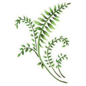 Mini Ferns Greeting Card Craft Stencil by Crafty Stencils