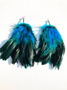 Blue Raven Feathers - Nappy Rutz