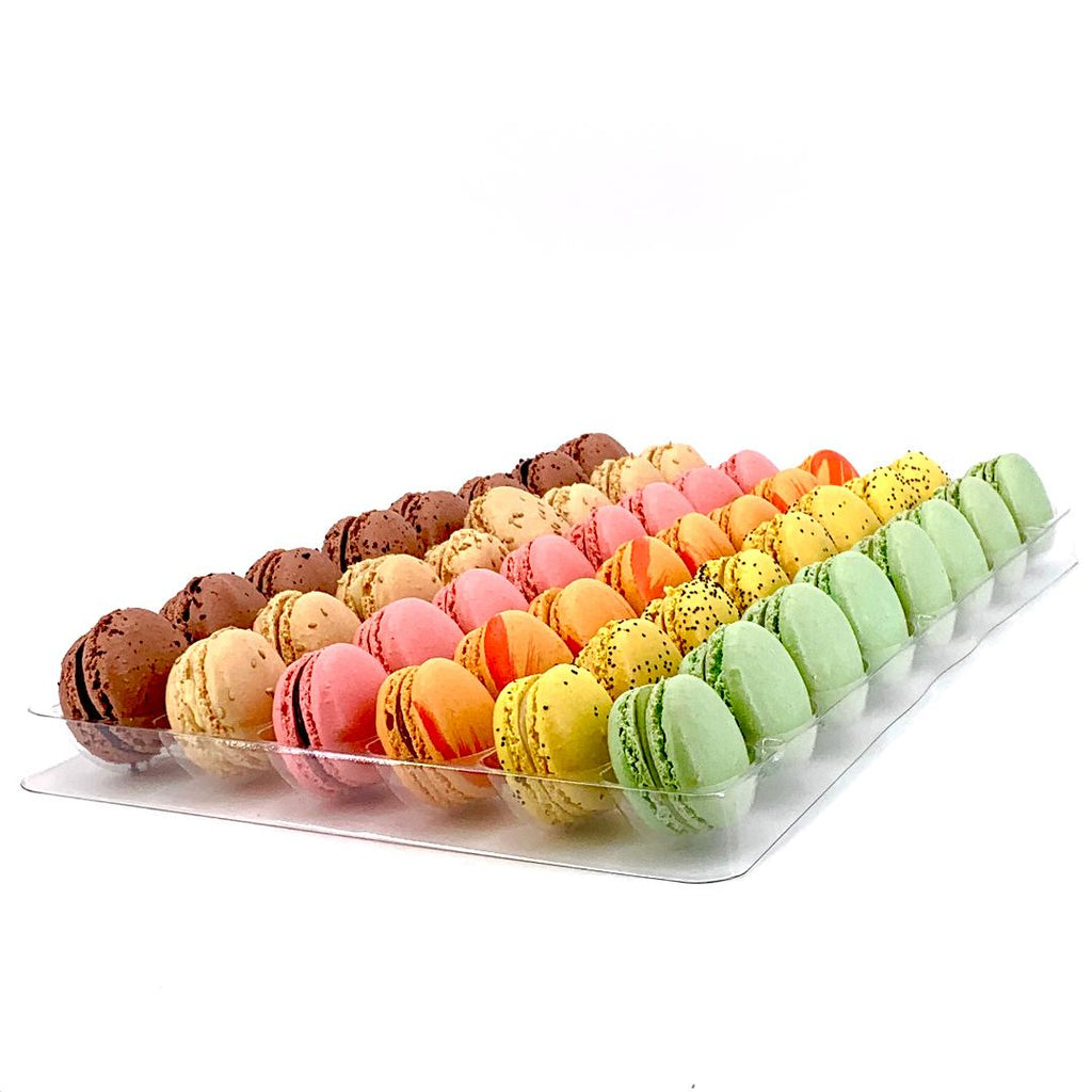 Chocolate & Fruit (12 or 48 pcs)