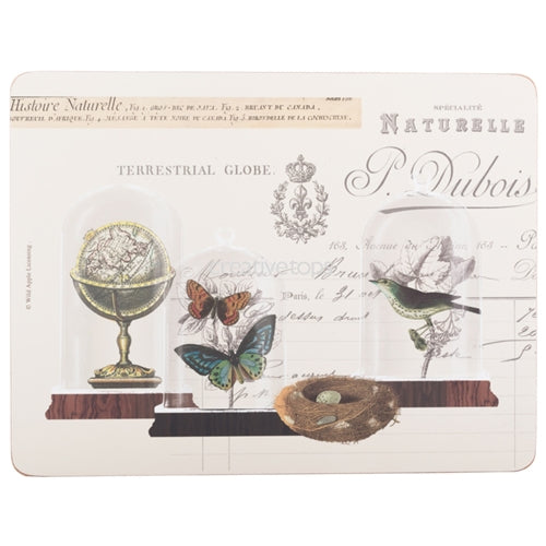 Nature Under Glass Placemats, Set Of 6