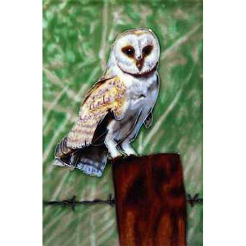 "Benaya Art Ceramic Tiles 'Barn Owl', 8"" x 12"""