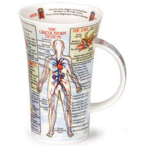 Dunoon Glencoe Fine Bone China Mug, Bodyworks