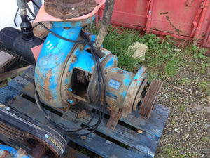 Goulds slurry pump