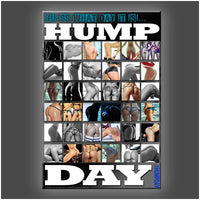 """Hump Day"" Stretched Canvas Print (Various Sizes)"