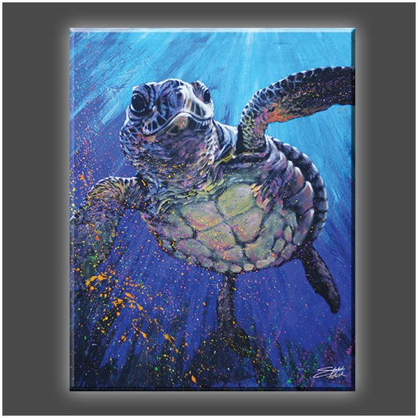 """Kemps' Ridley"" Stretched Canvas Print (Various Sizes)"