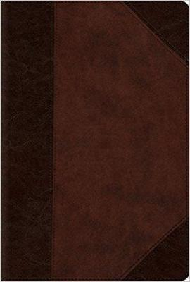 ESV Compact Bible/Large Print-Brown/Walnut Portfolio TruTone
