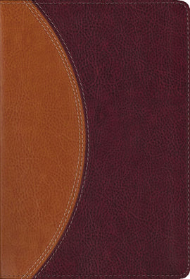 NIV Study Bible/Compact-Tan/Burgundy Duo-Tone