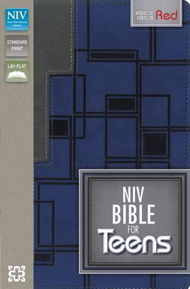 NIV Bible For Teens-Charcoal/Steel Blue Duo-Tone