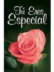 Span-Tract-You're Special (Tu Eres Especial) (NVI) (Pack Of 25)