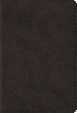 ESV Compact Bible/Large Print-Black TruTone
