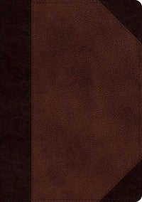 ESV Single Column Journaling Bible/Large Print-Brown/Walnut Portfolio TruTone