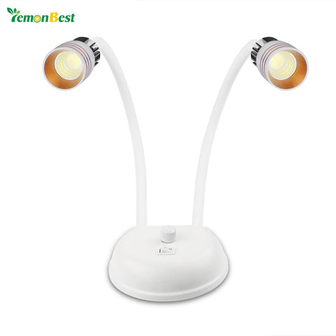Double Head LED Desk Reading Light Modern Interior Decoration Table Lamp