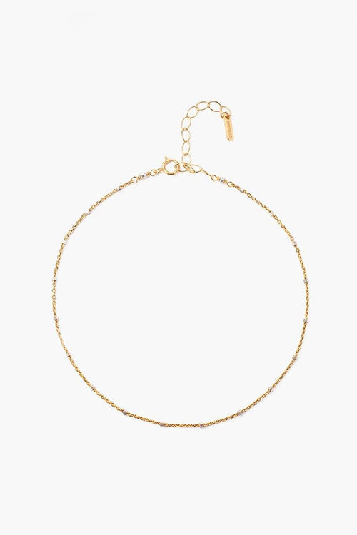 Yellow Gold Delicate Chain Anklet (Pre-Order)