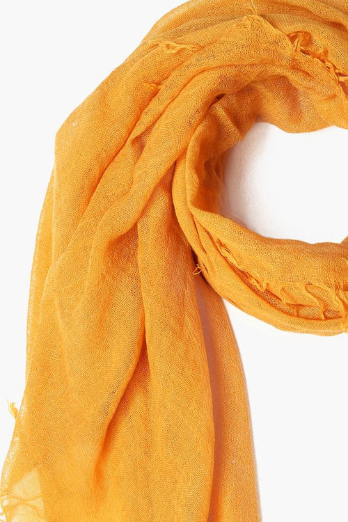Honey Gold Cashmere and Silk Scarf