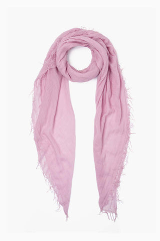 Dawn Pink Cashmere and Silk Scarf